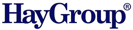 Logo Hay Group link site